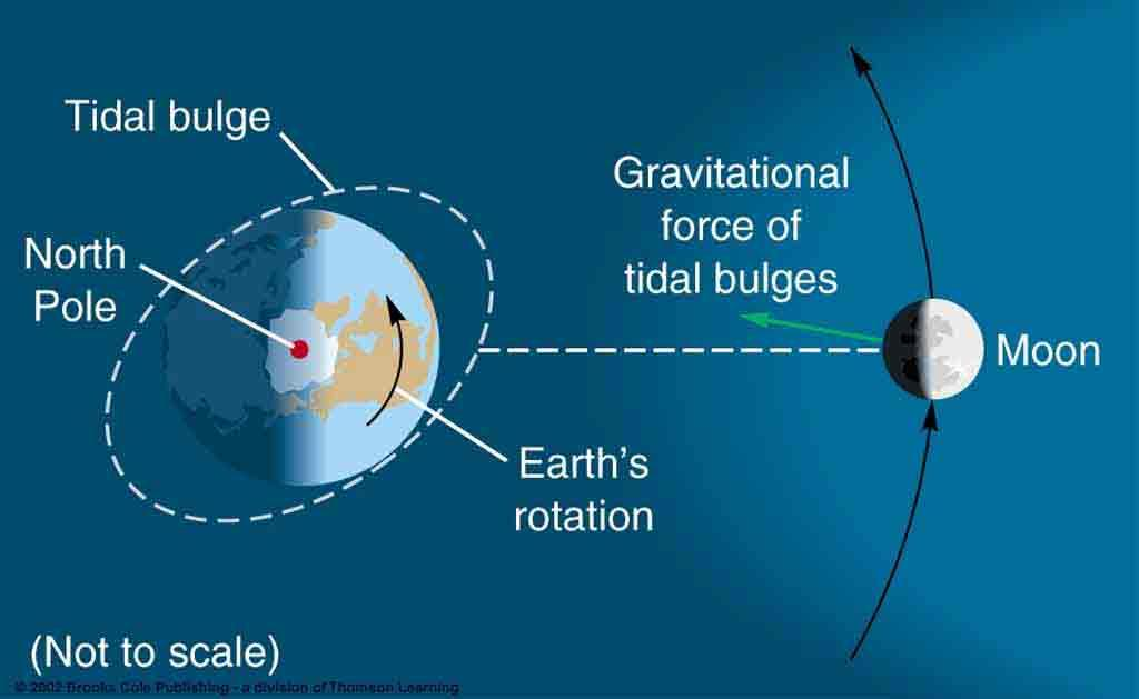 More on tides 1. Tidal friction leads to energy loss. 2. Earth s rotation drags the tidal bulge forward, helping pull the moon (its orbit is increasing in radius).