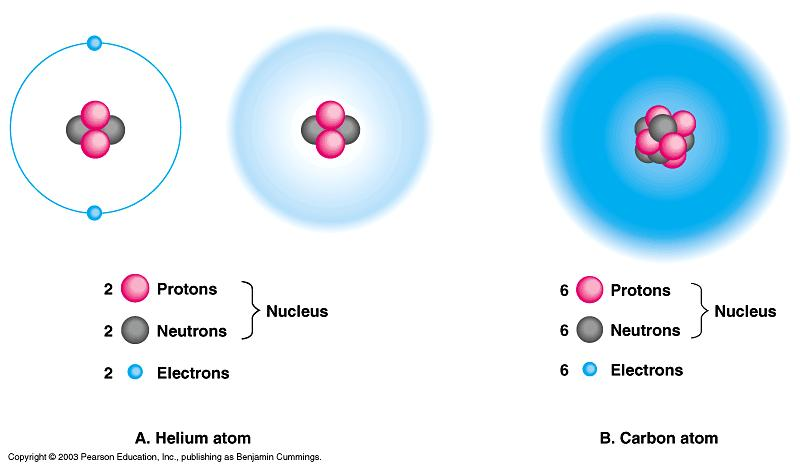 more atoms share electrons to form a molecule Molecule a group of atoms held together by a covalent bond Hydrogen bond contains