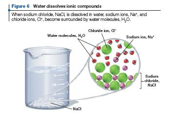 same kind Surface tension is the attraction of H 2 O molecules prevents the surface of water from stretching or