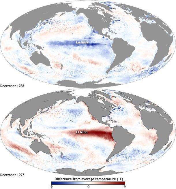 Nnawuike 24 Figure 1. Maps of sea surface temperature anomaly in the Pacific Ocean during a strong La Niña (top, December 1988) and El Niño (bottom, December 1997). Source: (NOAA, 2014).