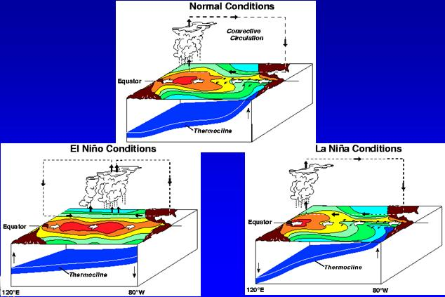 frequent thunderstorm activity) PACIFIC OCEAN GULF OF MEXICO Conceptual diagram of key