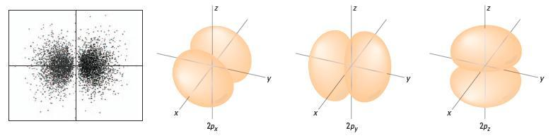 was needed +½ or ½ only. s Orbitals l = 0 orbital: Every shell (n level) has one s orbital. Spherical. Larger n value = larger sphere View an e - as a spinning sphere.
