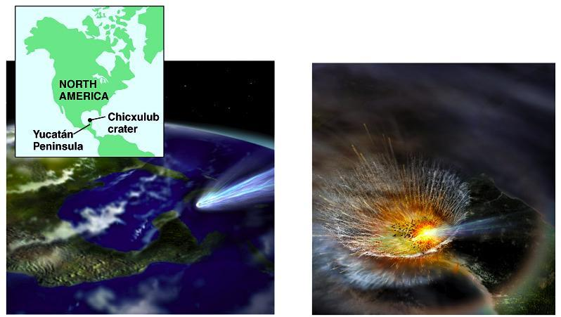 fossil record 543 mya Cretaceous extinction The Chicxulub impact crater in the Caribbean Sea near