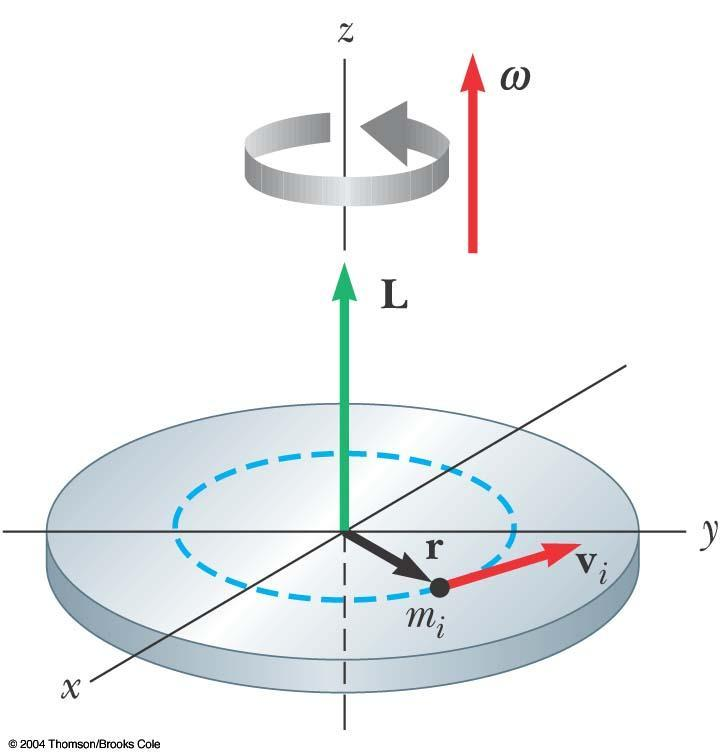 Angular Momentum of a Rotating Rigid Object Each particle of the object rotates in the xy plane about the z axis with