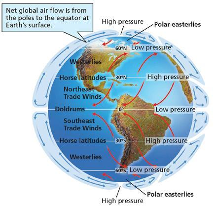 Global Wind Patterns trade wind: Blow from east to west Latitudes 30º latitude to the equator in both hemispheres