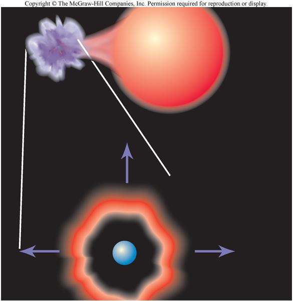 Chapter 13, Part 2: The Evolution of Binary Stars Describe the mechanism of mass transfer in binary star systems.