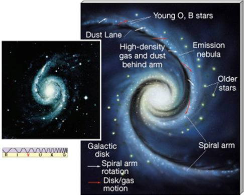 Stars in the disk tend to be Population I stars, which are young and have some heavier elements (i.e., higher metal abundance).