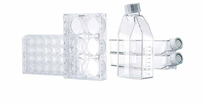 308 309 Cell Handling Cell Handling Eppendorf Cell Culture Consumables Eppendorf Cell Culture Plates, 6-Well, Sterile, pyrogen-, DNase-, RNase-, human and bacterial DNA-free.