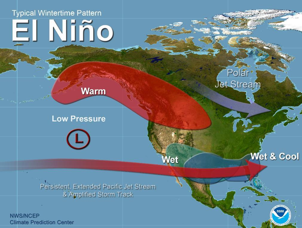 El Niño Winter Teleconnections El Niňo typically causes subtropical jet to be active over southern U.S.