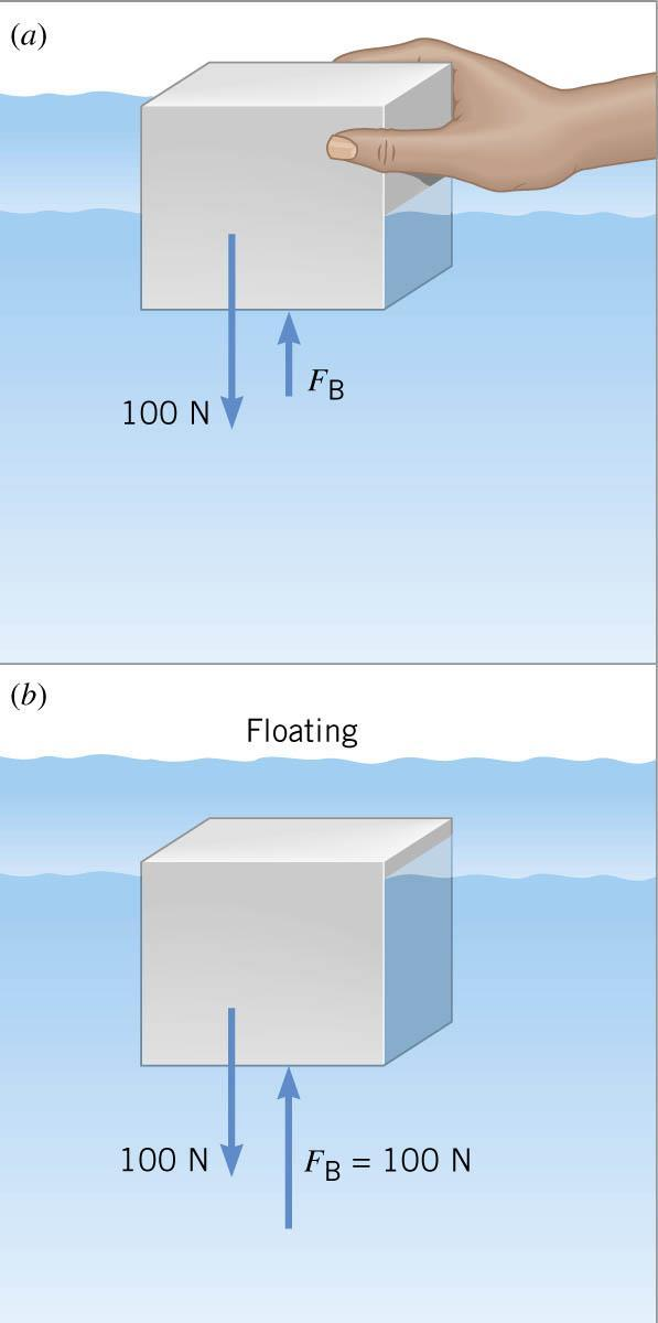 .6 Archimedes Principle If the object is floating then the