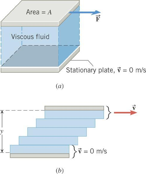 . Viscous Flow FORCE NEEDED TO MOVE A LAYER OF VISCOUS FLUID WITH CONSTANT VELOCITY The magnitude of the tangential force required to move a fluid