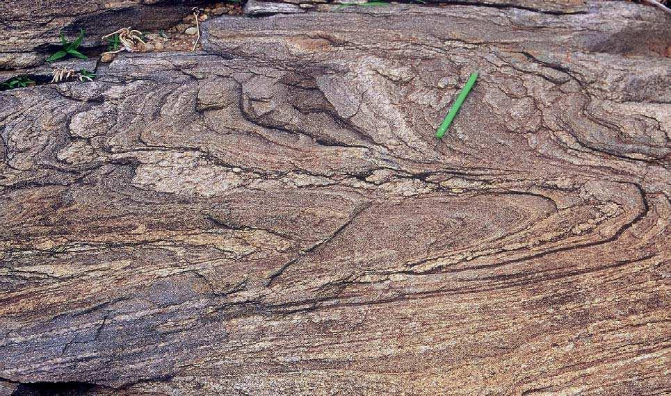Figure 6. Fold and shear patterns in the eastern gneisses. (a) Similar folds in unit b, 3 km north of Rolla.
