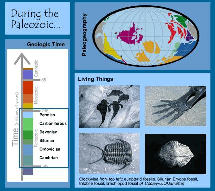 The Phanerozoic Eon The Paleozoic Era Phanerozoic eon composed of three time periods: Called eras Based on the occurrence of mass extinctions Each era subdivided into specific periods Paleozoic