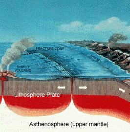 thick -- extremely high pressures Heat moves upward through mantle Forms convection cells Extreme heat comes from: Radioactive decay Friction