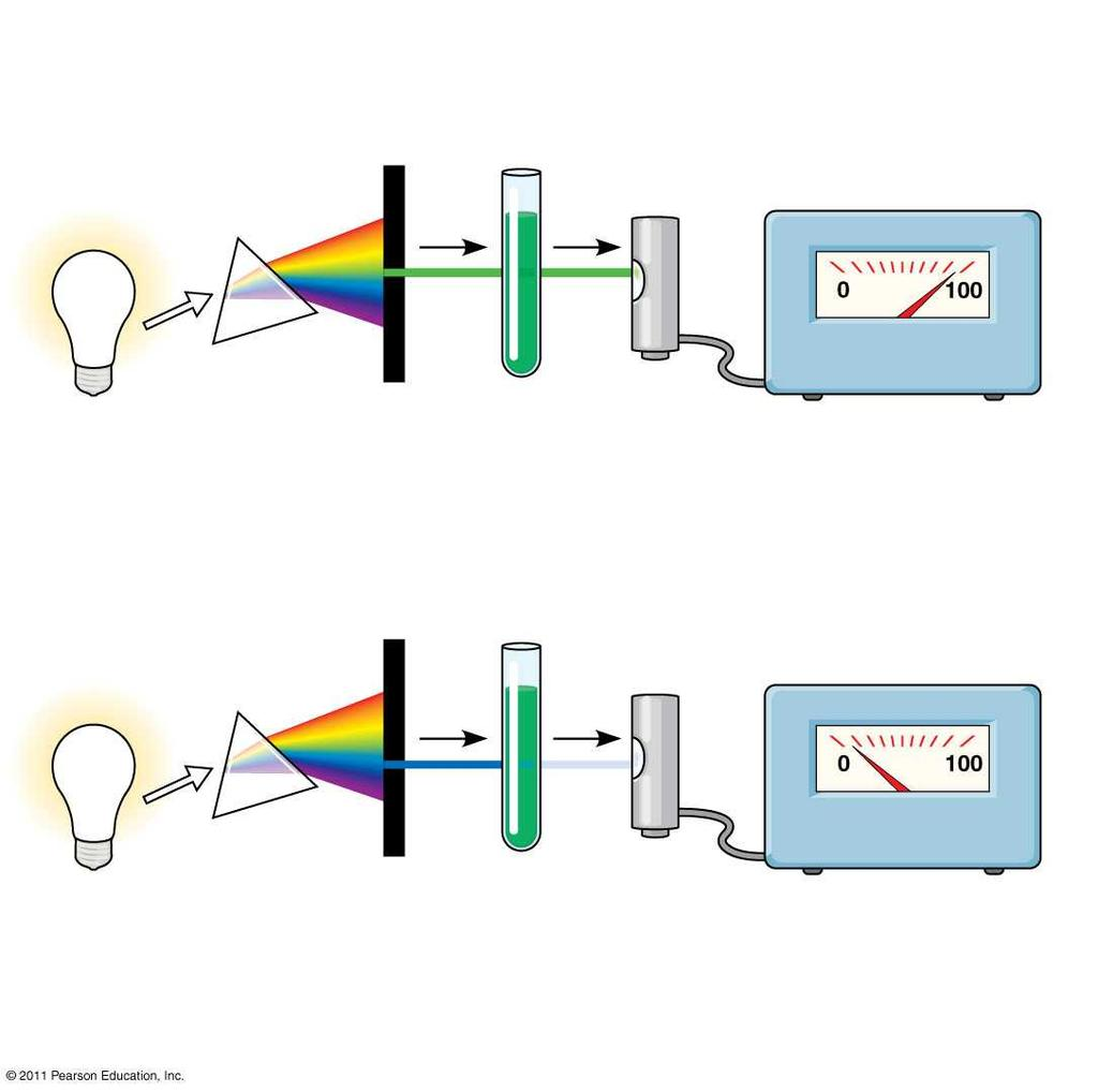 Figure 10.9 TECHNIQUE Refracting Chlorophyll Photoelectric solution tube White prism Galvanometer light Slit moves to pass light of selected wavelength.