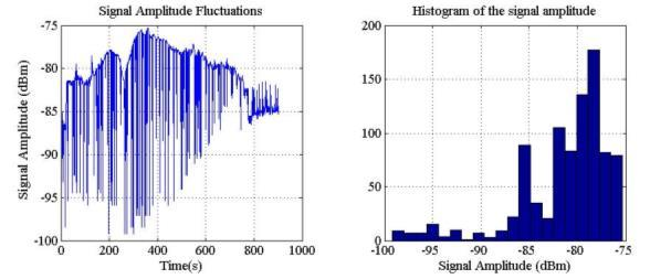 Fluctuation amplitude distribution The first