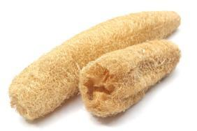 Luffa sponge is not a sponge but a gourd.