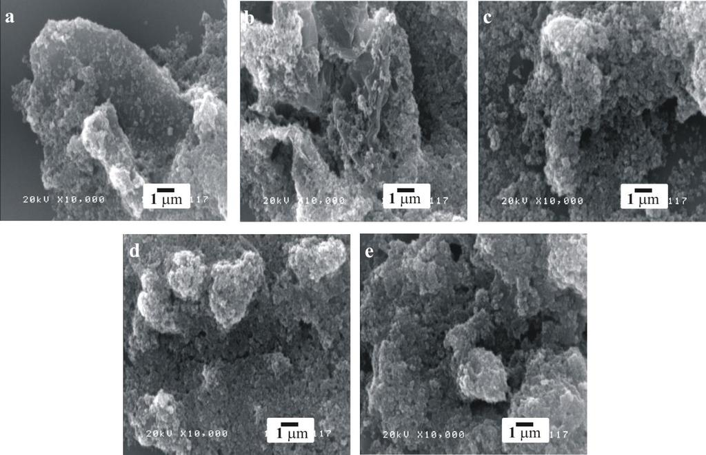 501 3. Results and discussion 3.1 Characteristics of as-prepared GF:TiO 2 nanocomposites Both SEM and TEM were used to investigate the morphology of as-prepared GF:TiO 2 nanocomposites. Fig.