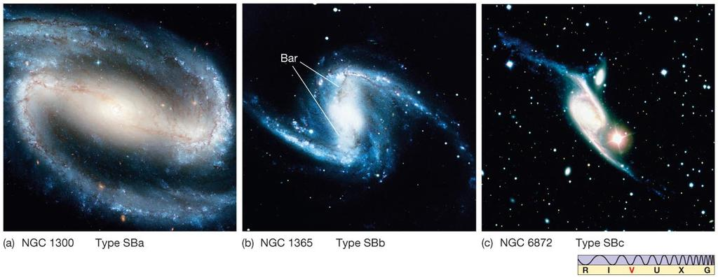 Galaxy: disk, core, halo, bulge, spiral arms.