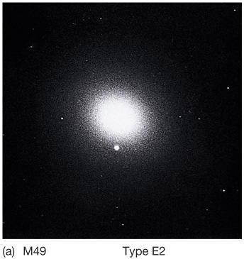 Elliptical galaxies have no spiral arms and no disk.