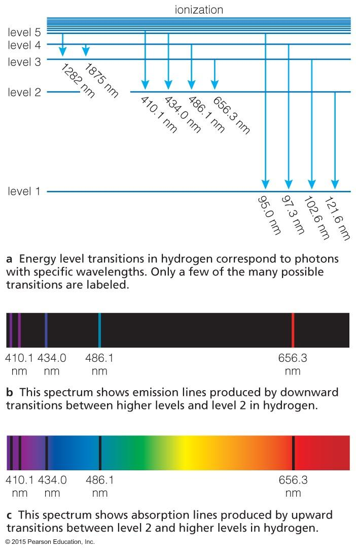 absorption lines in the spectrum.
