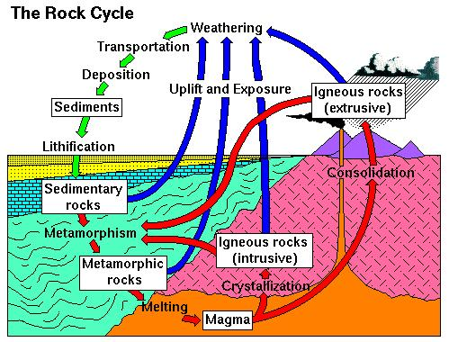 Label the following: magma lava igneous rock (extrusive) igneous rock (intrusive) weathering transportation