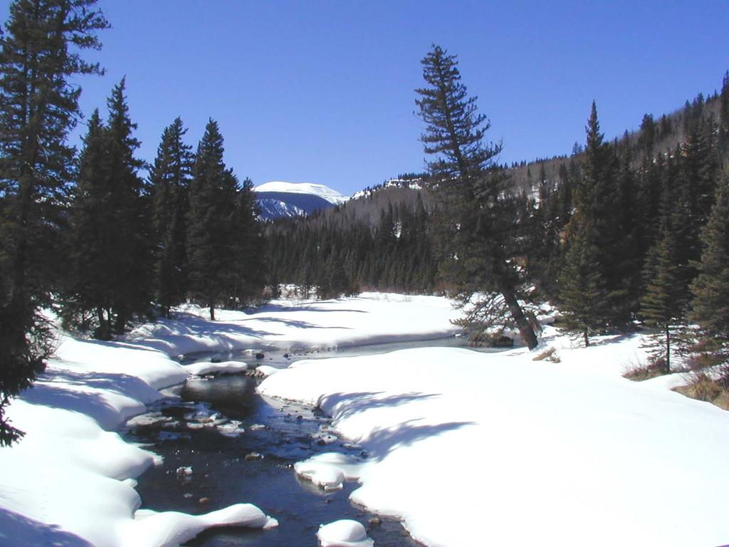 Research directions: integrating water & biogeochemical cycles snow