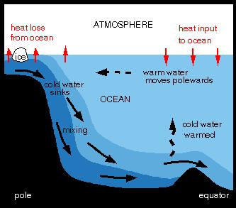 YD probably caused by ice sheet breakup and flooding in the northern North Atlantic The meltwater pulse could cause the thermohaline circulation to shutdown