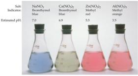 Effect of Cations and Anions An anion that is the conjugate base of a strong acid will not affect the ph.