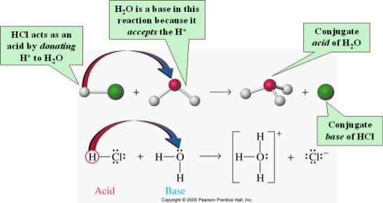 Conjugate Acids and Bases The conjugate acid of a base is