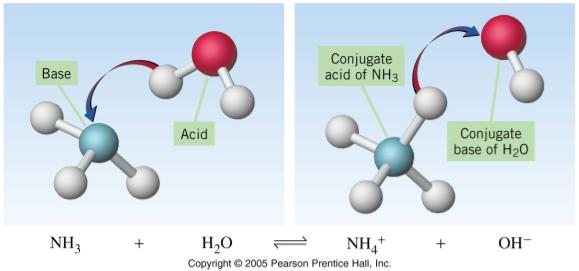 of an acid is the acid minus the proton Acid conjugate