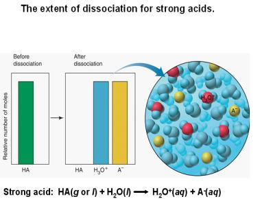 Strength of Conjugate Acid Base