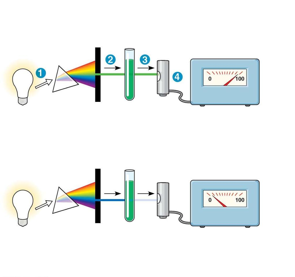 Figure 8.8 Technique White light Refracting prism Chlorophyll solution Photoelectric tube Galvanometer Slit moves to pass light of selected wavelength.