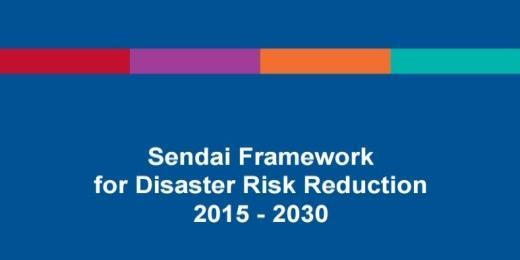 Priority 3: Investing in disaster risk reduction for resilience.