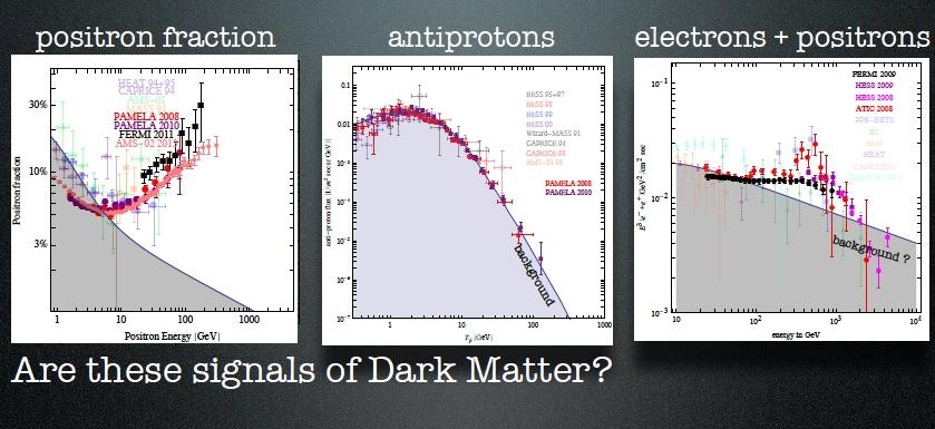 Dark Matter interpretation