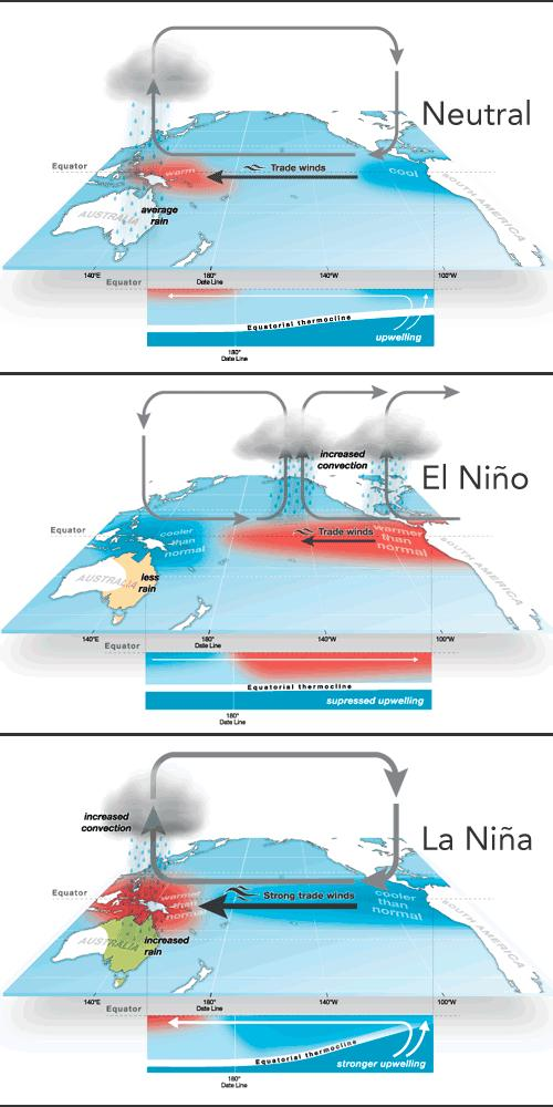 WHAT IS EL NIÑO? El Niño-Southern Oscillation (ENSO) events i.e. El Niño and La Niña are natural phenomena that occur on average every two to seven years.