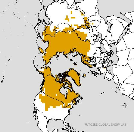NOTHERN HEMISPHERE SNOW COVER/GROWTH The more widespread the snow coverage/depth over Siberia & Eurasia, the higher the probability of the AO becoming negative.