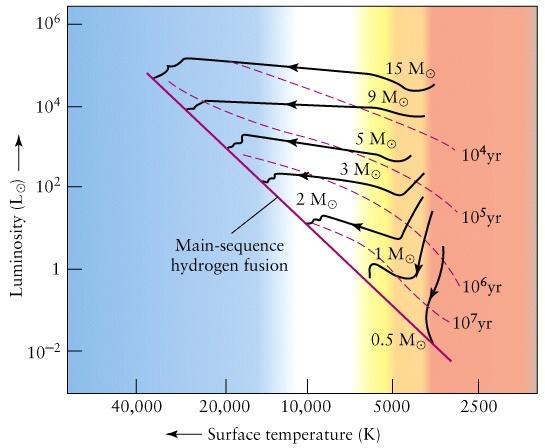 Evolutionary Track of Protostars High- mass stars Approximately a horizontal line on an H-R diagram Progression is toward the left Cool to hot Solar- mass stars Approximately a V-shaped line on an