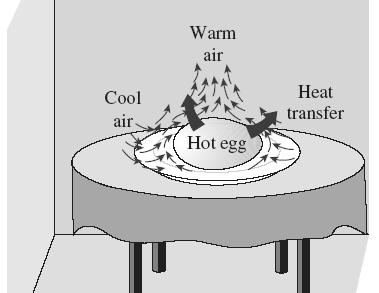 The motion that results from the continual replacement of the heated air in the vicinity of the egg by the cooler air nearby is called a natural convection current, and the heat transfer that is