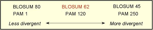 BLOSUM II The protein families were originally identified by Bairoch in the Prosite catalog.