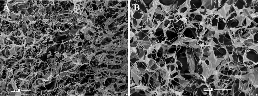 7 as a function of time for (A) PV10/PSS and (B) PV10/Alg. Figure 9. SEM images of sponges composed of (A) PV10/PSS and (B) PV10/Alg.