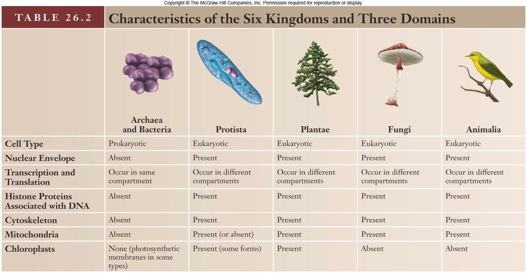 25 26 Viruses Are not organisms and so cannot be placed in any of the kingdoms Are literally