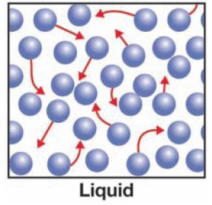 THE PHASES OF MATTER Liquid holds its volume, but does not hold its