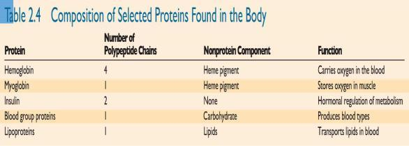 Lipoproteins contain lipids Others, like hemoglobin, contain a pigment Nucleic Acids