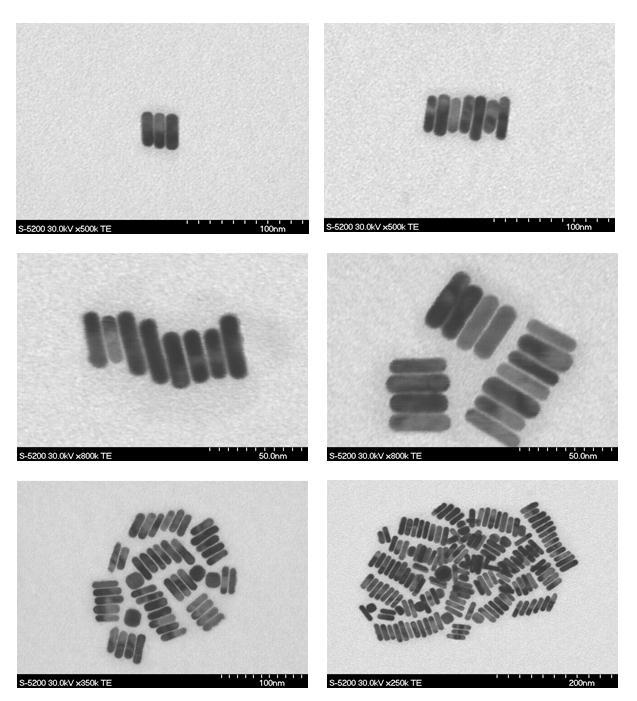 102 Figure 4.8. Representative scanning transmission electron microscopy (STEM) images of NRs in various stages of side-by-side assembly.