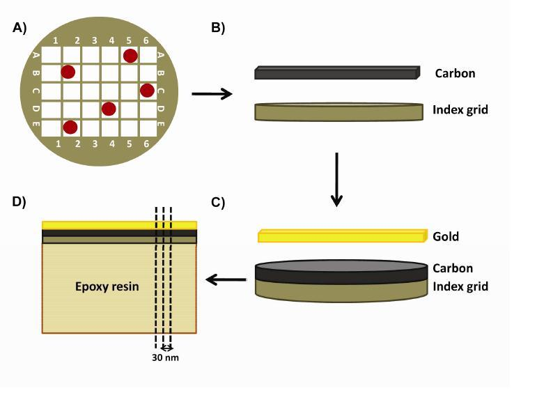 54 Figure 2.1. Cross-sectional sample preparation for internal structure investigation of lamellae by STEM. (A) CdSe QD and nanorod lamellae were prepared on separate carbon coated indexed TEM grids.