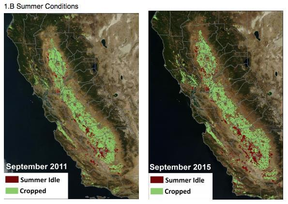 Fallowed Land Tracking Monitoring extent of bare agricultural lands assisted CA in deciding water