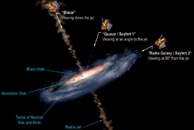 Blazars: relativistic outflows viewed close to