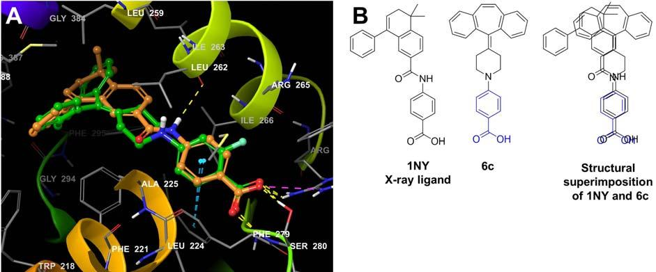 Figure 7: (A) The binding mode and superimposition of docked x-ray ligand and 6c (B) The structural superimposition of x-ray ligand and 6c Table 1: The selected N-arylated cyproheptadine derivatives.