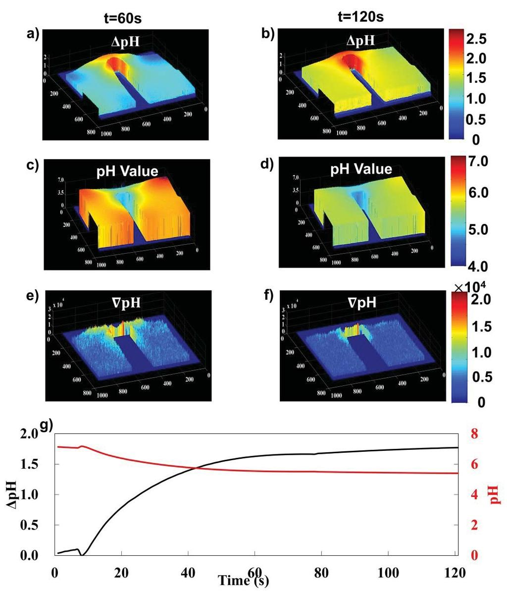 Electrochemical Processes In Microfluidics Systems Under Ac Electric Tang Ampere Digital Dc Volth S 34 Figure 24 Ph Change Time Analysisa And B